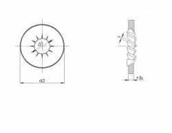 Rondelle à dents intérieures chevauchantes forme concave NFE 25512 acier ressort zingué blanc EVANTAIL®